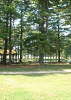 Picnic Area at Dufresne Park