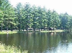 Pond at Dufresne Park